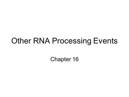 Other RNA Processing Events Chapter 16. Ribosomal RNA Processing rRNA genes of both eukaryotes and bacteria are transcribed as larger precursors must.