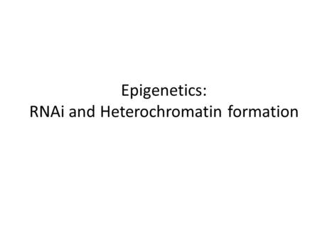 Epigenetics: RNAi and Heterochromatin formation
