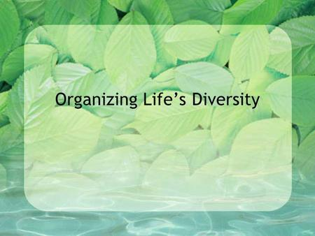 Organizing Life's Diversity. Classification – the grouping of objects or information based on similarities. (ie. organizing your music collection)