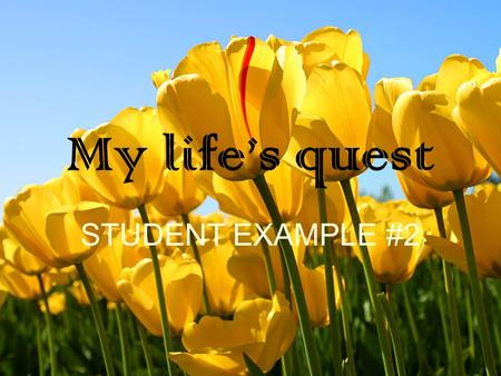 My life's quest STUDENT EXAMPLE #2. Who am I? I am creative I am a perfectionist I am random I am caring I am goofy I am a competitive and active person.
