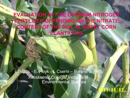 EVALUATION OF THE OPTIMUM NITROGEN FERTILIZER DEPENDING ON THE NITRATE CONTENT OF THE SOIL IN SWEET CORN PLANTATION I. Buzás - E. Hoyk - I. Cserni – Borsné.