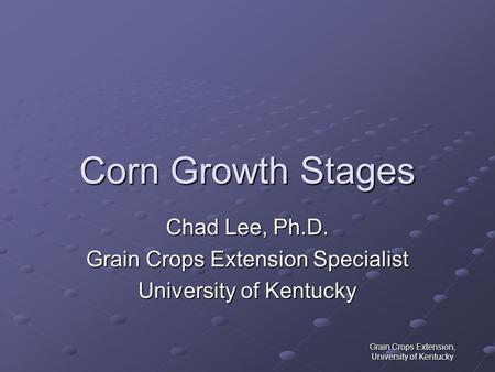 Grain Crops Extension, University of Kentucky Corn Growth Stages Chad Lee, Ph.D. Grain Crops Extension Specialist University of Kentucky.