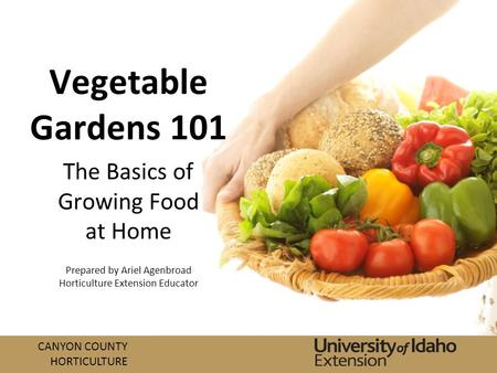 CANYON COUNTY HORTICULTURE Vegetable Gardens 101 The Basics of Growing Food at Home Prepared by Ariel Agenbroad Horticulture Extension Educator.