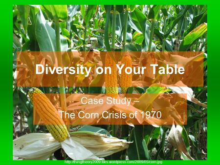 Diversity on Your Table Case Study – The Corn Crisis of 1970