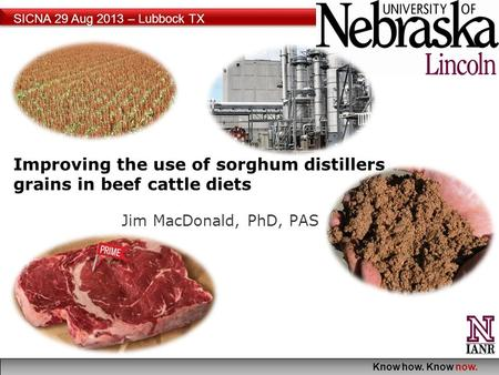 Know how. Know now. SICNA 29 Aug 2013 – Lubbock TX Improving the use of sorghum distillers grains in beef cattle diets Jim MacDonald, PhD, PAS.