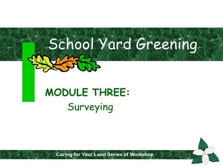 School Yard Greening MODULE THREE: Surveying Fall 2001 Caring for Your Land Series of Workshops Caring for Your Land Series of Workshop.