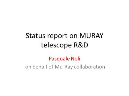 Status report on MURAY telescope R&D