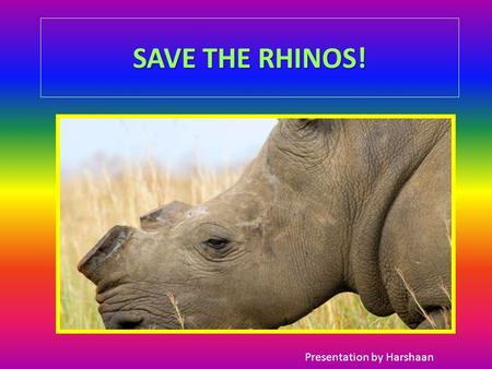 SAVE THE RHINOS! Presentation by Harshaan. Save the rhinos, children of the future might not see them, when they grow up! QUICK BEFORE IT IS TO LATE !