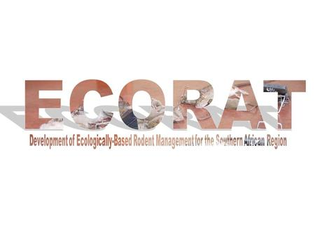 Ecologically-Based Rodent Management for the SADC Region.