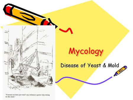 Mycology Disease of Yeast & Mold.