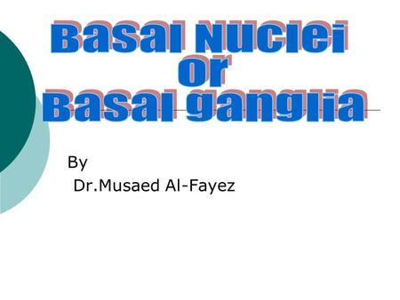 By Dr.Musaed Al-Fayez. Basal Ganglia The basal ganglia are among the most complex and least understood structures in the mammalian forebrain.