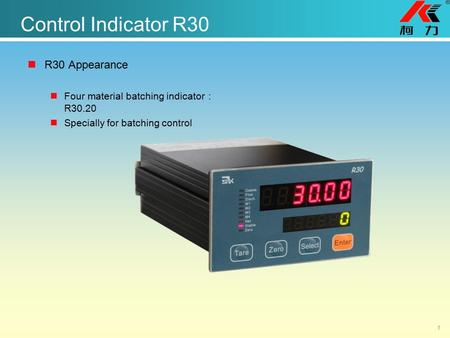 Control Indicator R30 R30 Appearance