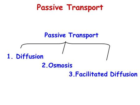 Passive Transport 1. Diffusion 2.Osmosis 3.Facilitated Diffusion.