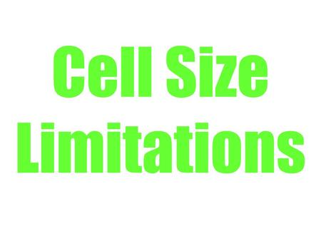 Cell Size Limitations. Why are living organisms the sizes that they are? Are there advantages to being large or small? What are the advantages to being.
