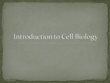 While we watch the YouTube clip, take notes about the scientists involved in the discovery of cells. Note the dates, people involved, and their particular.