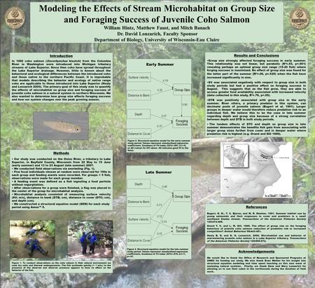 Modeling the Effects of Stream Microhabitat on Group Size and Foraging Success of Juvenile Coho Salmon William Hintz, Matthew Faust, and Mitch Banach Dr.
