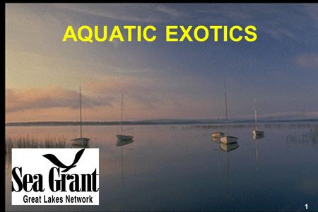 AQUATIC EXOTICS Aquatic exotics are causing serious ecological and economic damage to our nation — damage that could be happening right in your own backyard.