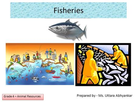 Prepared by - Ms. Uttara Abhyankar Grade 4 – Animal Resources Fisheries.