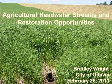 Agricultural Headwater Streams and Restoration Opportunities Bradley Wright Bradley Wright City of Ottawa City of Ottawa February 25, 2011.