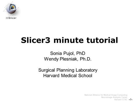 Pujol S., Plesniak, W. -1- National Alliance for Medical Image Computing Neuroimage Analysis Center Harvard CTSC Slicer3 minute tutorial Sonia Pujol, PhD.