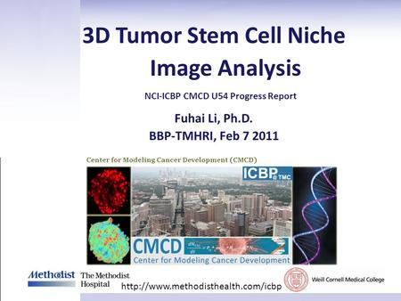 Fuhai Li, Ph.D. BBP-TMHRI, Feb 7 2011 3D Tumor Stem Cell Niche Image Analysis  NCI-ICBP CMCD U54 Progress Report.
