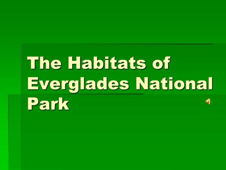 The Habitats of Everglades National Park. How Habitats Form Slight changes in elevation (only inches), water, and soil create entirely different landscapes,