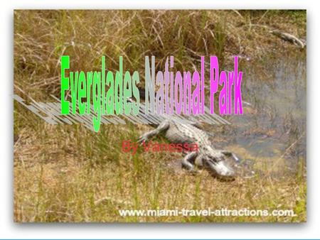 By Vanessa. Park Facts The park was established in 1947, by Harry S. Truman. Mary Stone Douglas saved the Everglades too.