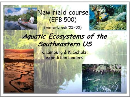 New field course (EFB 500) (winter break '02-'03) Aquatic Ecosystems of the Southeastern US K. Limburg & K. Schulz, expedition leaders.