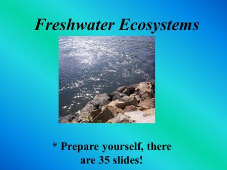 Freshwater Ecosystems * Prepare yourself, there are 35 slides!