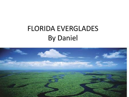 FLORIDA EVERGLADES By Daniel Where is it located? It is located in southern Florida. It is a wet land. Each year there is a wet season and a dry season.