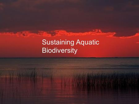 Sustaining Aquatic Biodiversity. Core Case Study: A Biological Roller Coaster Ride in Lake Victoria  Lake Victoria has lost their endemic fish species.
