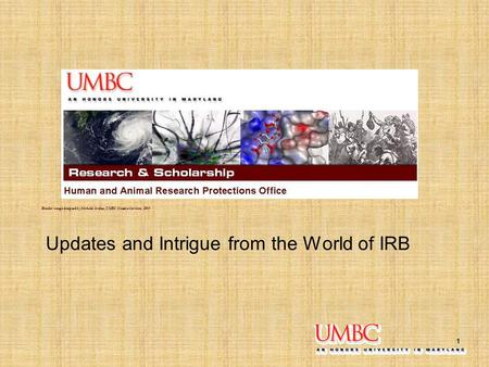 1 Updates and Intrigue from the World of IRB Header image designed by Michelle Jordan, UMBC Creative Services, 2009.