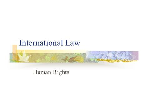 International Law Human Rights. Is there such a thing as certain natural, historical, fundamental rights of humans? Roosevelt's Four Freedoms (1941) Speech.