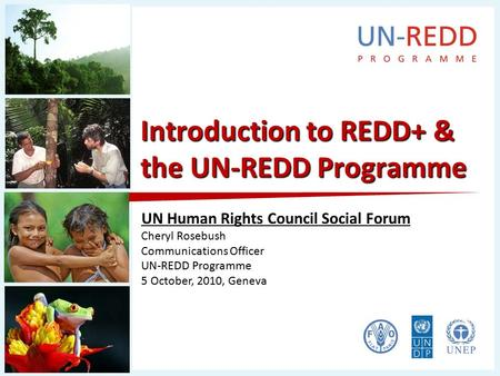 Introduction to REDD+ & the UN-REDD Programme UN Human Rights Council Social Forum Cheryl Rosebush Communications Officer UN-REDD Programme 5 October,