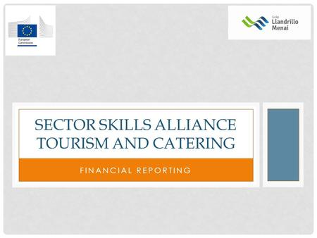 FINANCIAL REPORTING SECTOR SKILLS ALLIANCE TOURISM AND CATERING.