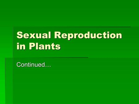 Sexual Reproduction in Plants Continued…. Pollination in Angiosperms  Before seeds can develop inside a flower, pollen grain from the anthers must reach.