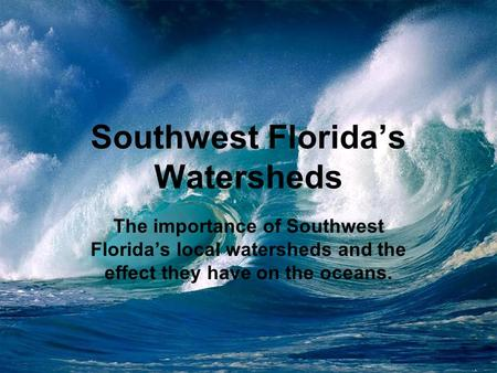 Southwest Florida's Watersheds The importance of Southwest Florida's local watersheds and the effect they have on the oceans.