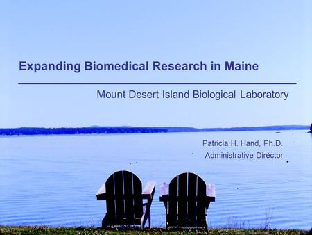 Expanding Biomedical Research in Maine Mount Desert Island Biological Laboratory Patricia H. Hand, Ph.D. Administrative Director.