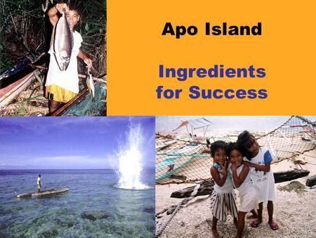 Apo Island Ingredients for Success. Outside stimulation and facilitation  Outsiders brought fresh ideas.  Marine biologist helped Islanders understand.