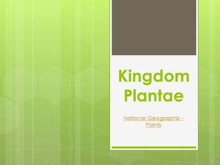 Kingdom Plantae National Geographic - Plants. Kingdom Plantae What are plants? most are autotrophs eukaryotic have cell walls containing cellulose mostly.