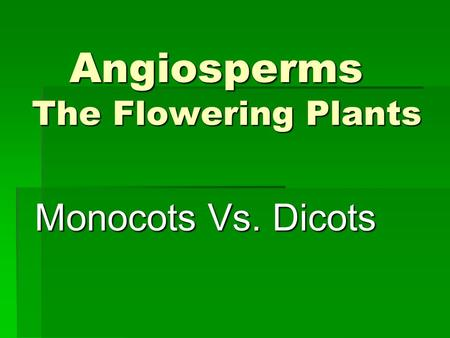 Angiosperms The Flowering Plants Monocots Vs. Dicots.