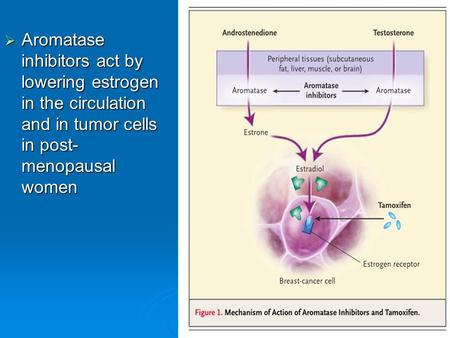  Aromatase inhibitors act by lowering estrogen in the circulation and in tumor cells in post- menopausal women.