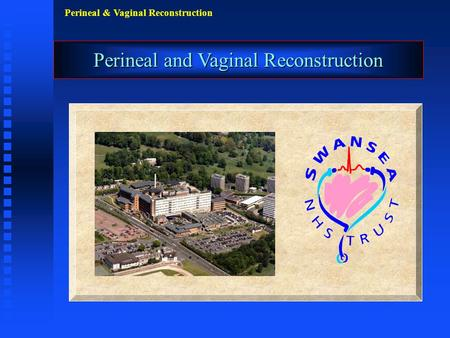 Perineal & Vaginal Reconstruction Perineal and Vaginal Reconstruction.