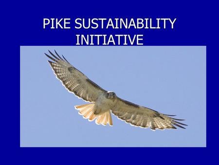 PIKE SUSTAINABILITY INITIATIVE. The Beginning…  1989: Pike announced that it would start to recycle paper  Fall 2007: Plastic recycling was added 