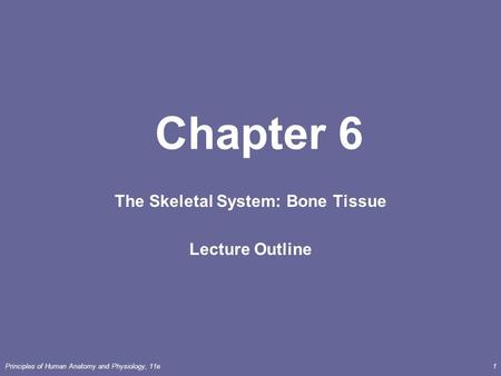 Principles of Human <strong>Anatomy</strong> <strong>and</strong> <strong>Physiology</strong>, 11e1 Chapter 6 The Skeletal System: Bone <strong>Tissue</strong> Lecture Outline.
