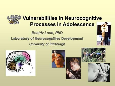 Beatriz Luna, PhD Laboratory of Neurocognitive Development University of Pittsburgh Vulnerabilities in Neurocognitive Processes in Adolescence.