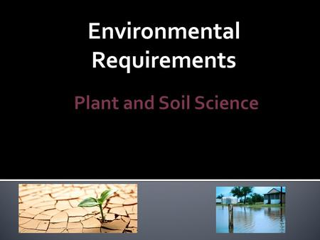 Environmental Requirements.  Plant health and development depends on water.  If the main source that makes up 90% of its source is limited or supplied.