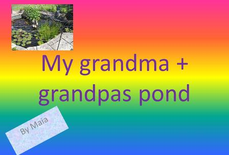 My grandma + grandpas pond By Maia. creature Yes or no Fish yes Tadpoleyes frogyes duckno Pond skateryes newt Results In there pond there are fish,
