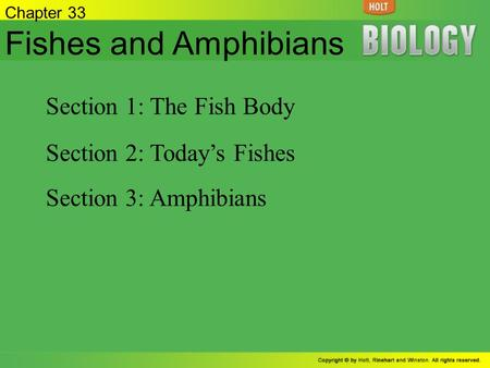 Fishes and Amphibians Section 1: The Fish Body