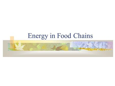 Energy in Food Chains B. ENERGY: THERMODYNAMICS 1st Law energy can neither be created nor destroyed it merely changes form solar  chemical  mechanical.